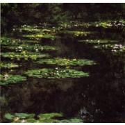 Monet - Water-Lilies21