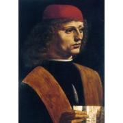 Da Vinci - Portrait of the Musician Franchino Guffurio