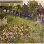 Van Gogh - Daubigny's Garden