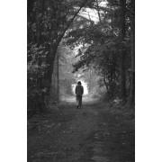 Βόλτα στην εξοχή3