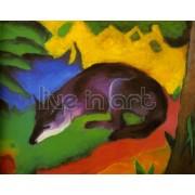 Marc - Blue-Black Fox