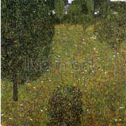 Klimt - Garden Landscape (Blossoming Meadow)